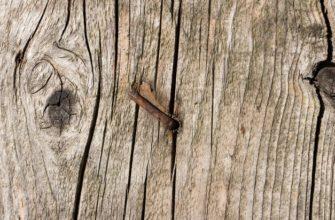 ржавчина от гвоздей на дерева