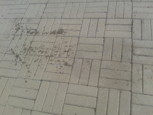 Как вывести машинное масло с тротуарной плитки